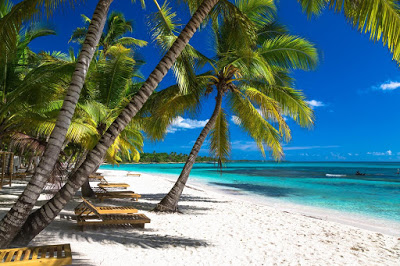 Tropical beach in caribbean sea, Saona island, Dominican Republic.