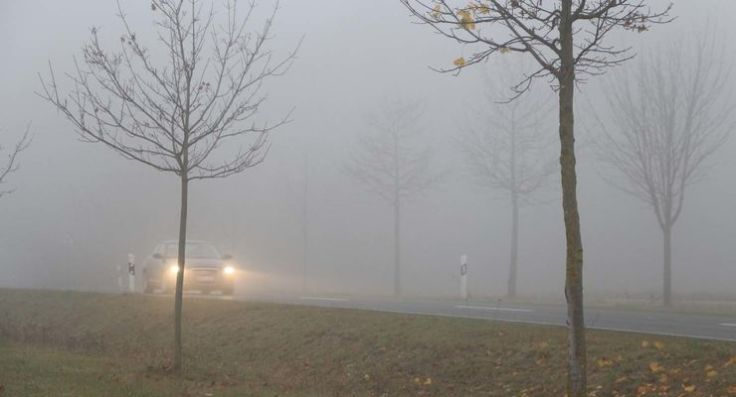 Nebel-articleDetail-9ca5217f-1056314
