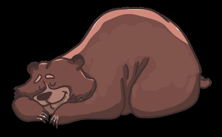 bear-2079672_960_720