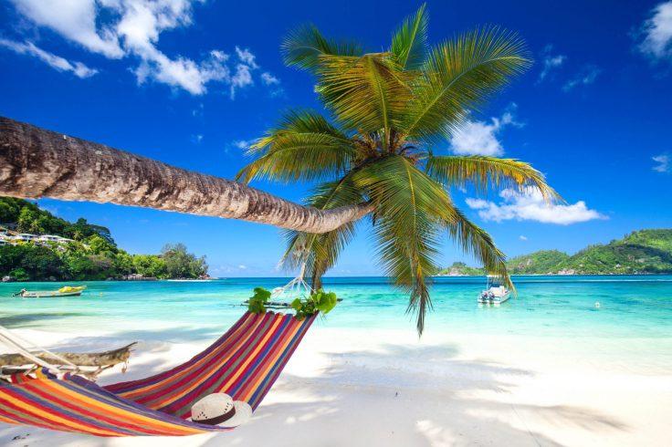 romantic-cozy-hammock-istock_65652839_xlarge-2-e1542010975316